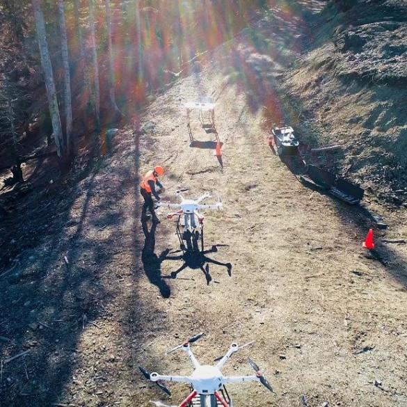 Drones para recuperar bosques
