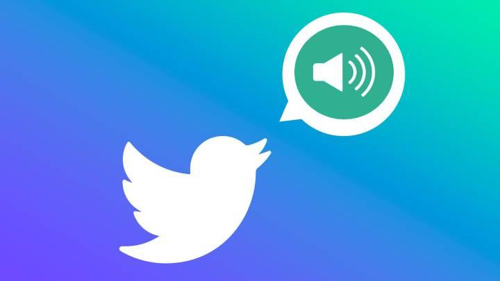 Mensaje de voz de Twitter